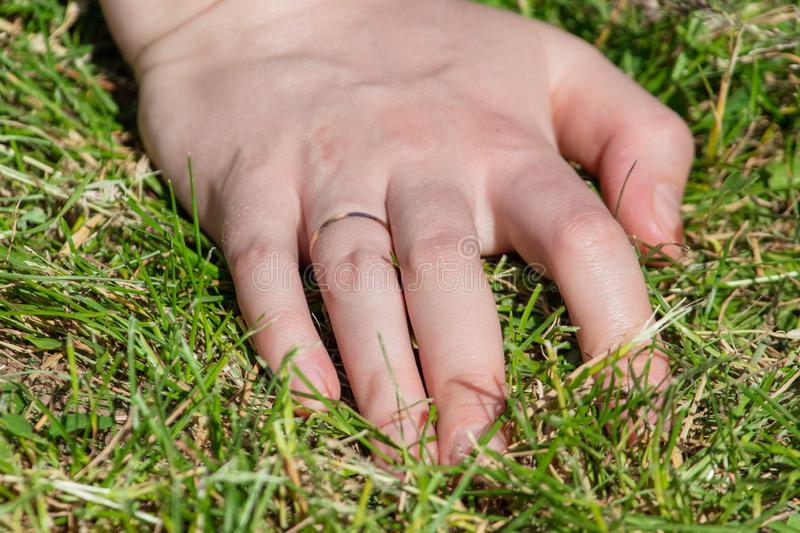 Hand on the girl on the grass royalty free stock photography