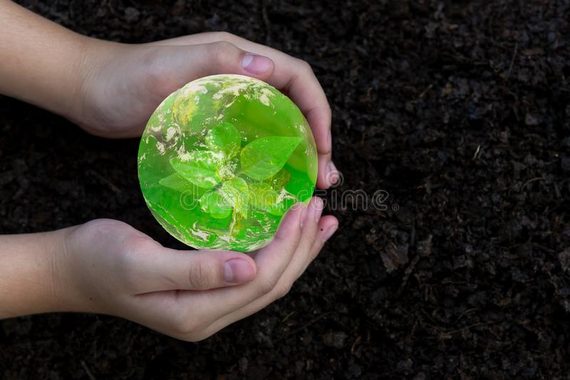 Hand girl holding and protecting, sapling plant tree for save earth globe on soil.   World Environment and Save Environment stock photos
