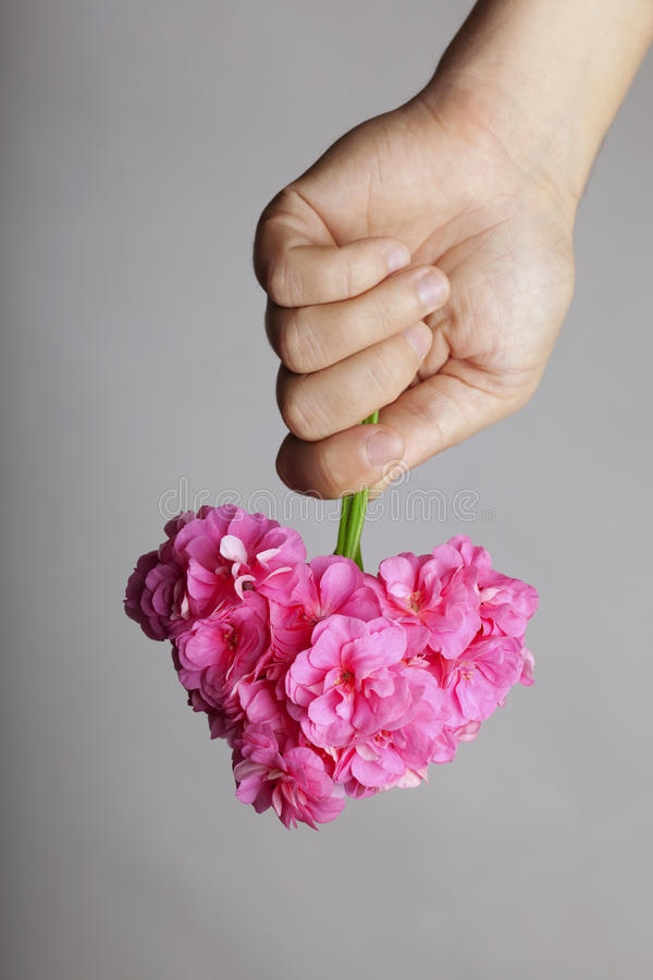 Hand gives a bouquet of flowers in heart shape stock image