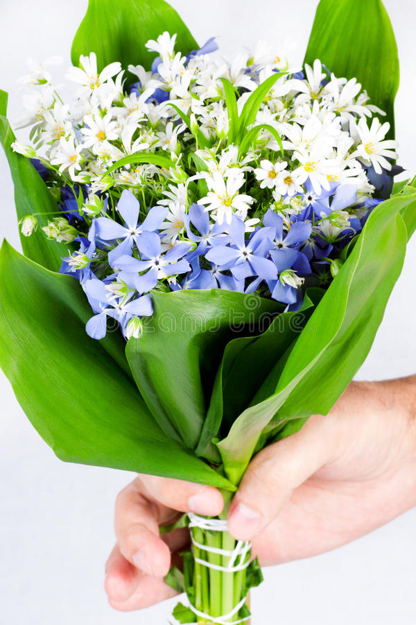 Hand Giving A Bouquet Of Spring Flowers Stock Image - Image of herb ...