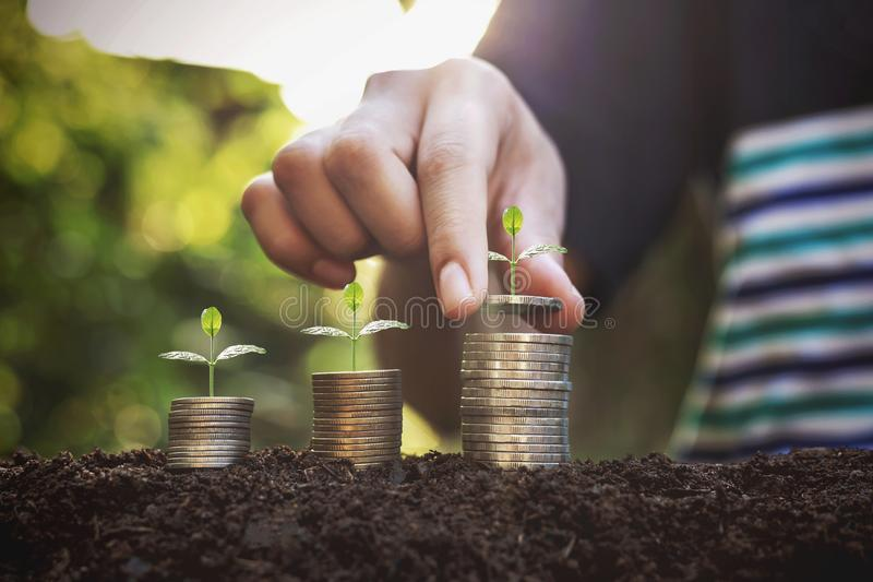 Hand giving a coin to a tree growing from pile In coin Money. Financial accounting, Investment Concept stock photos