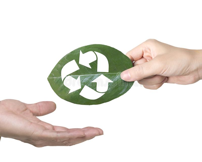 Hand giving leaf with hole of recycling symbol, resource recovery royalty free stock images