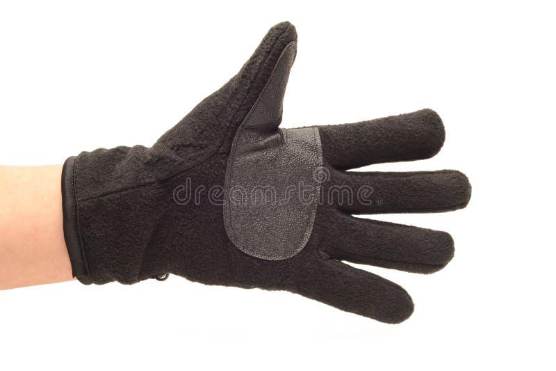 Download Hand in glove stock photo. Image of garment, warm, glove - 22909108