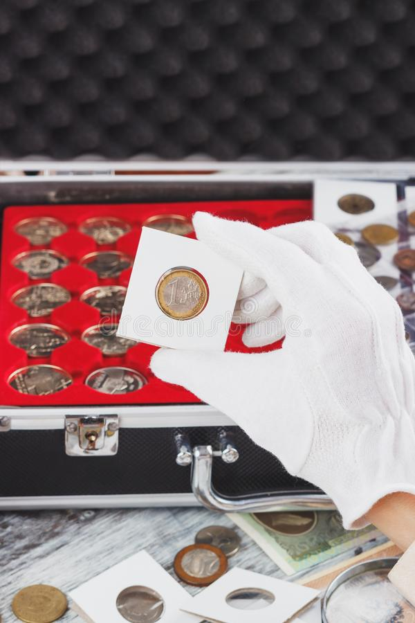 Hand in the glove holds gold collector coin. Soft focus background royalty free stock photos