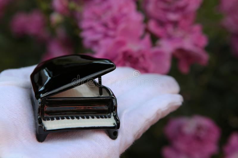Hand glove piano rose flower background. Day light royalty free stock photo