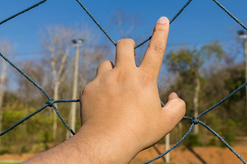Hand grab the rope mesh. Fence stock photos