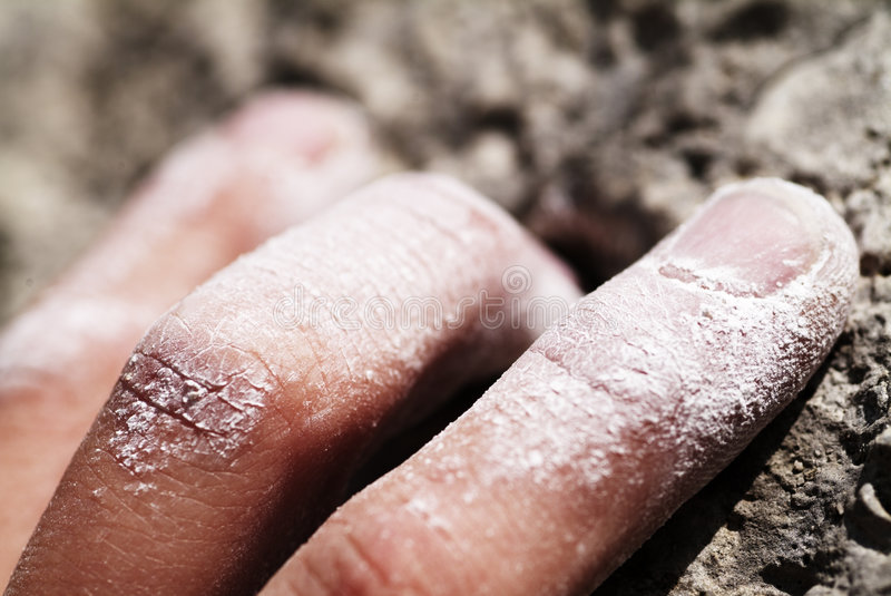 Download Hand Gripping stock image. Image of nature, endurance - 1468711