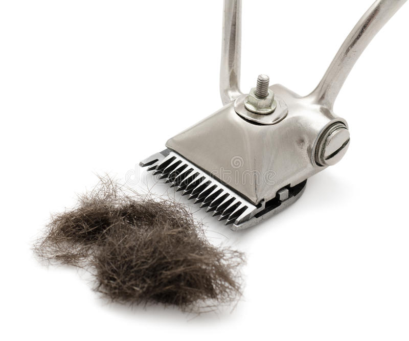 Download Hand hairclipper stock image. Image of barber, metal - 25725265