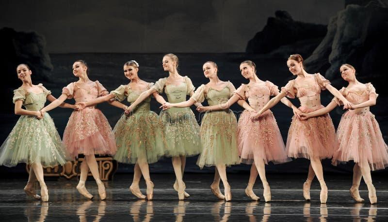 Hand in Hand Ballettmädchen lizenzfreies stockbild