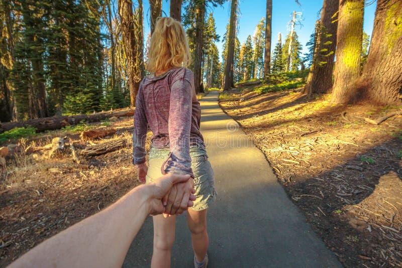 Hand in hand Sequoia Wandeling stock afbeeldingen