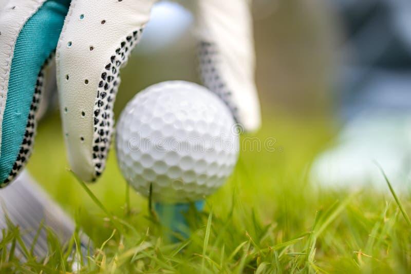Hand in handschoenen met golfbal royalty-vrije stock foto