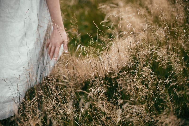 Hand among herbs and wildflowers in field. Boho woman walking in countryside among grass, simple slow life style. Space for text. stock photos