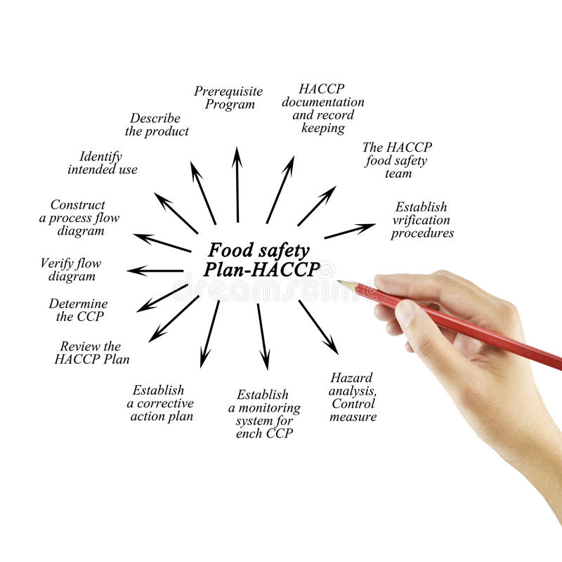 Hand het schrijven element van Voedselveiligheid plan-HACCP voor conc zaken royalty-vrije stock afbeelding