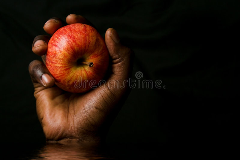 Hand holding apple royalty free stock image