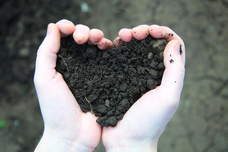 Hand holding black soil in the form of heart. On soil background royalty free stock photos