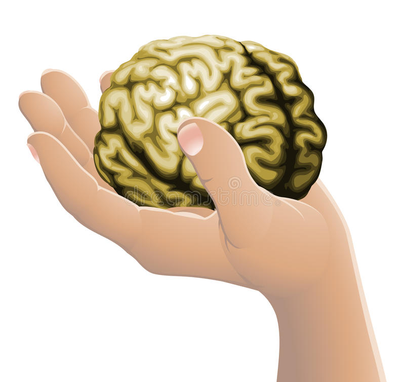 Download Hand holding a brain stock vector. Image of conceptual - 22954322