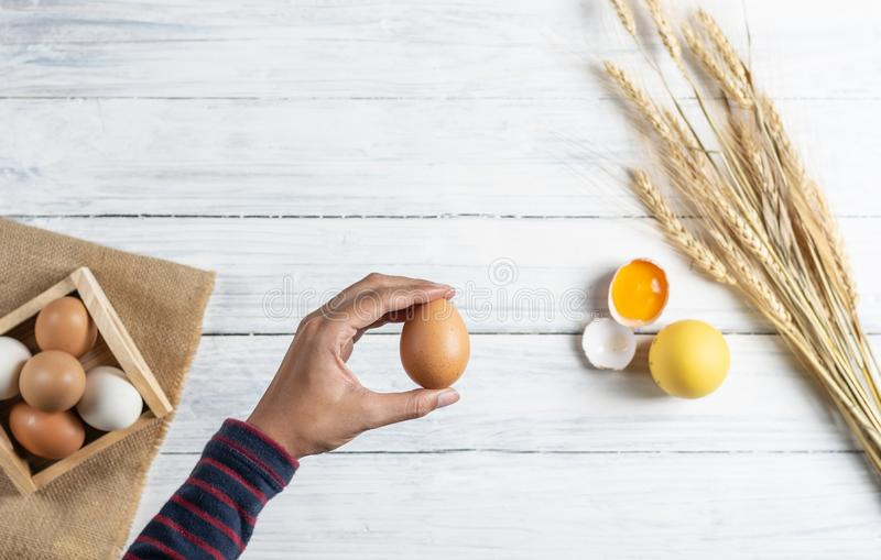 Hand holding brown egg on white wood background stock photo