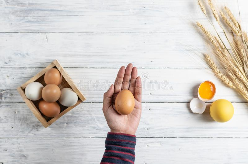 Hand holding brown egg on white wood background stock image