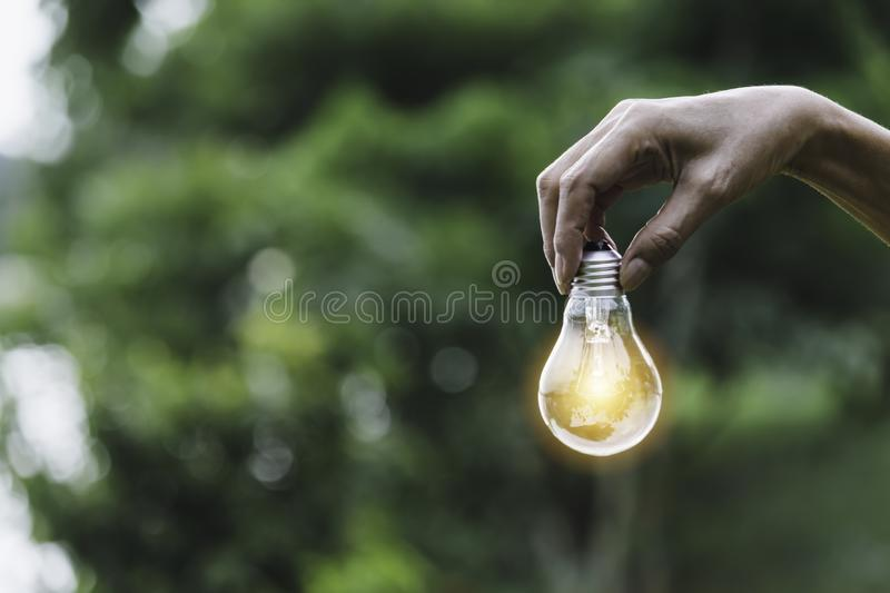 Hand holding bulb in nature on green background stock image