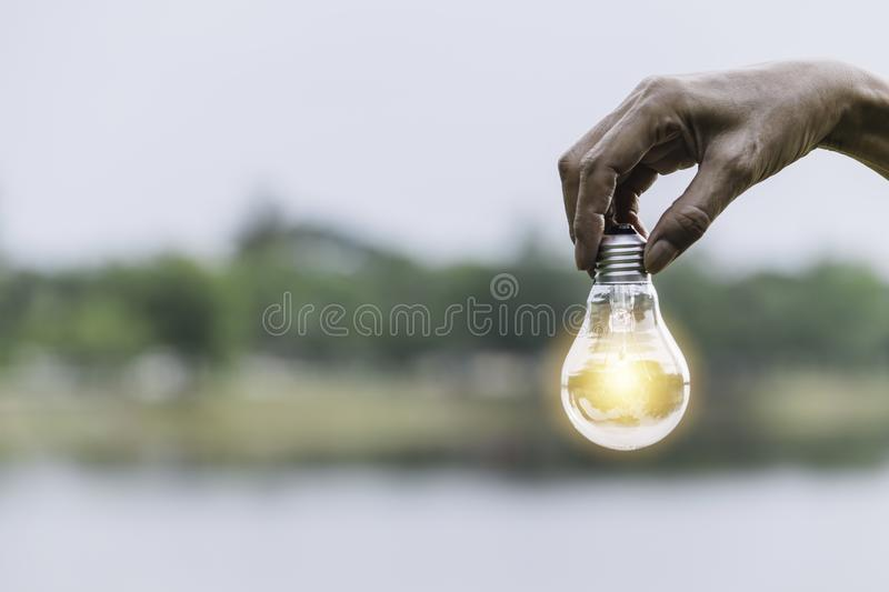 Hand holding bulb in nature on green background royalty free stock photo