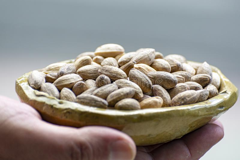 Hand holding clay bowl with dried pistachio nuts close up. Hand holding small clay bowl with dried pistachio nuts close up royalty free stock images