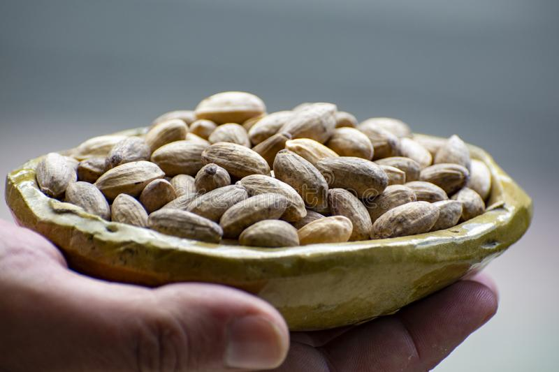 Hand holding clay bowl with dried pistachio nuts close up. Hand holding small clay bowl with dried pistachio nuts close up royalty free stock photos