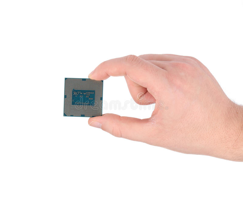 Hand holding a computer CPU chip. Isolated on a white background royalty free stock images