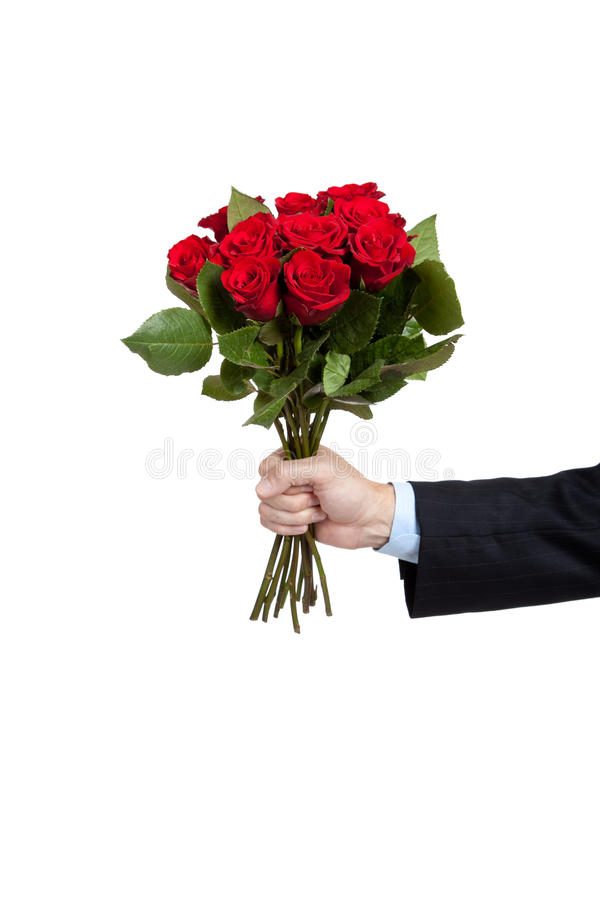 A hand holding a dozen red roses on white royalty free stock photos