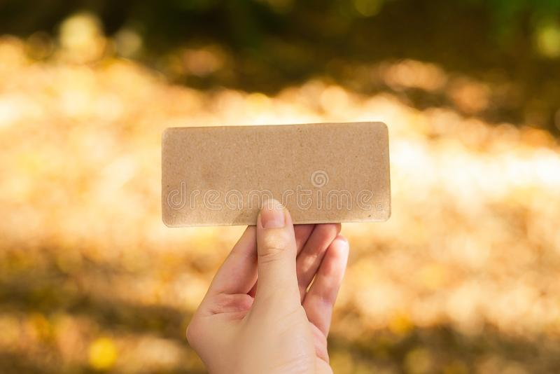 Hand holding empty card in autumn park in sunny rays.  Background. Copy space. Top view stock image