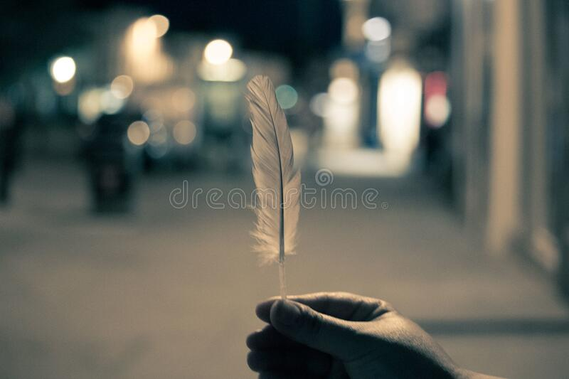 Hand Holding Feather Free Public Domain Cc0 Image