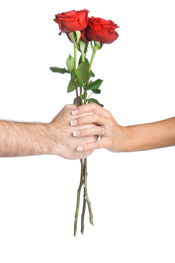 Hand Holding Flowers stock image
