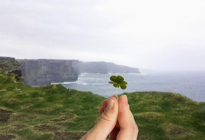 Hand holding four leaf clover. Cliffs of Moher irish background stock photography