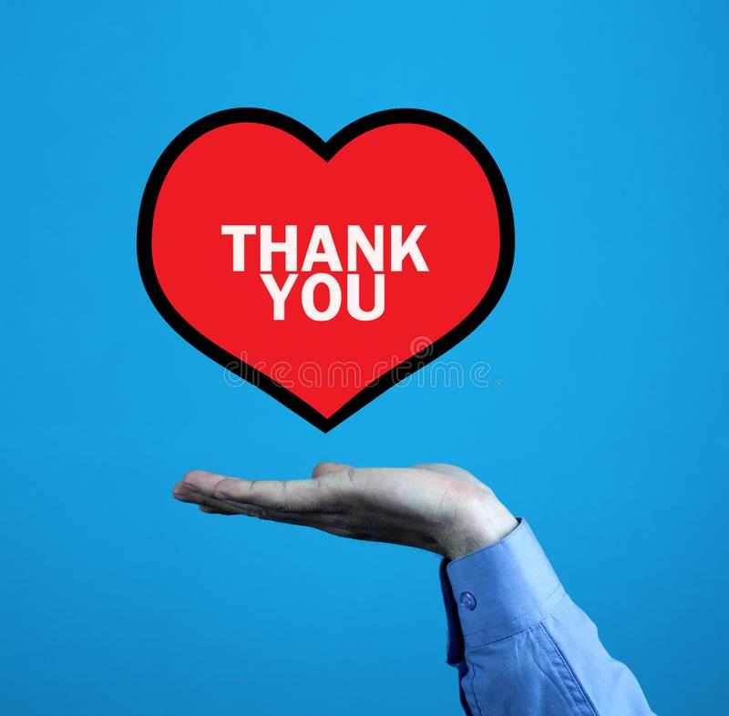 Hand holding heart. Thank You message on a red heart royalty free stock images