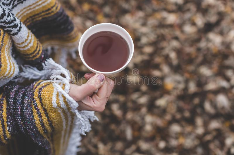 Hand holding hot beverage royalty free stock photography