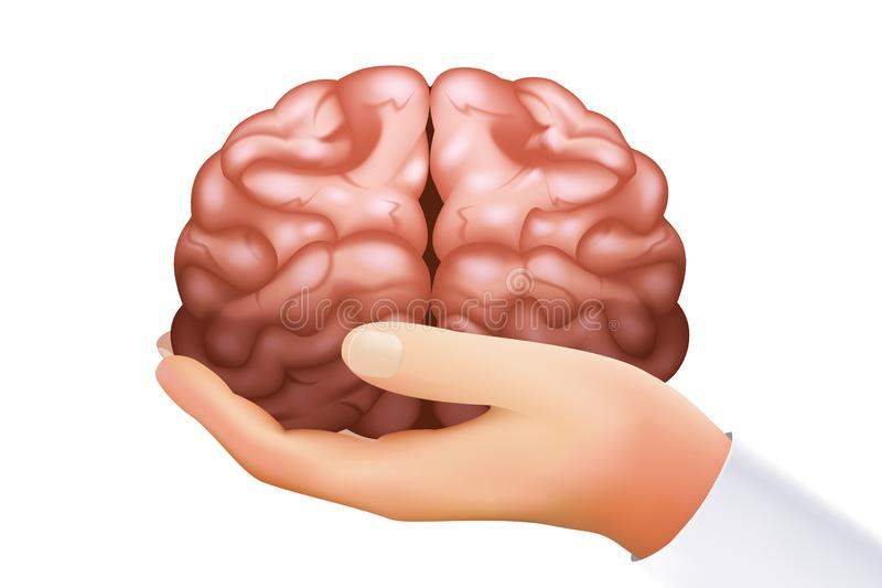 Hand holding human brain mind organ science concept isolated on white icon realistic 3d design template vector stock illustration