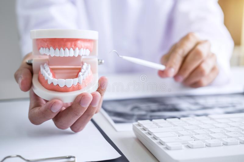 Dentist hand holding of jaw model of teeth and cleaning dental w royalty free stock photography