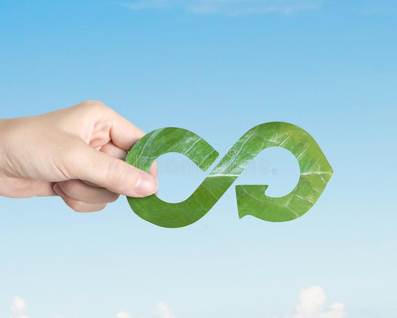 Hand holding leaf in arrow infinity recycling shape, circular economy royalty free stock photography