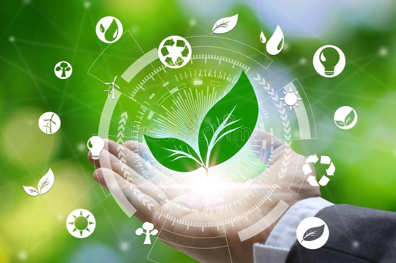 Hand holding with leaf and environment icons over the Network connection on nature background, Technology ecology concept. Environmental protection concept stock images