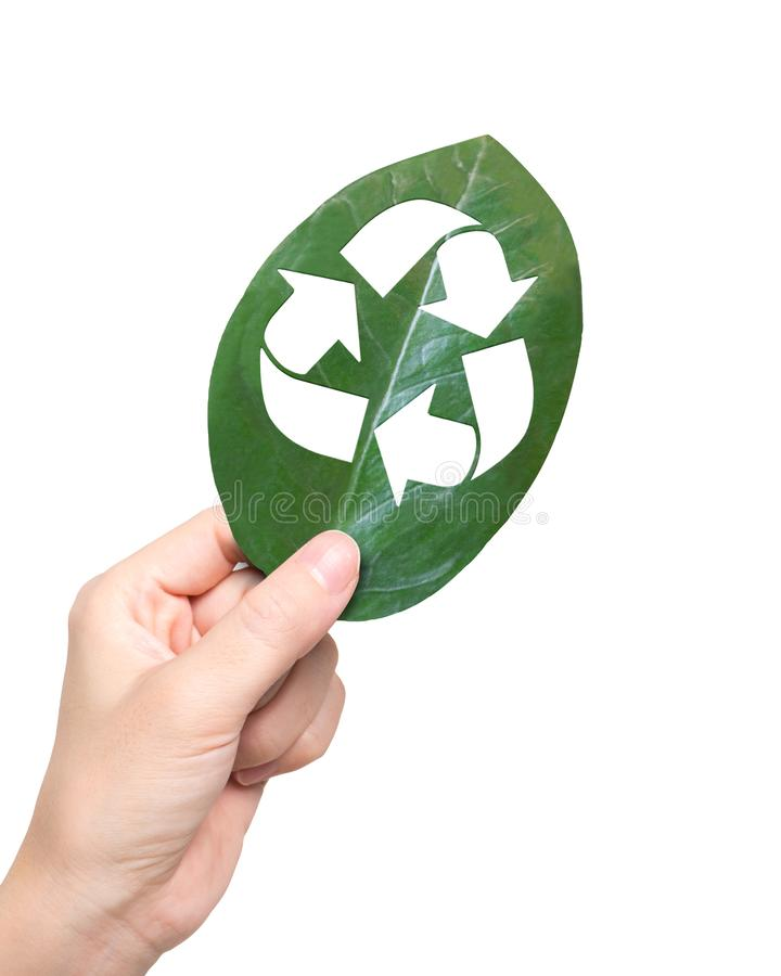 Hand holding leaf with hole of recycling symbol, resource recovery royalty free stock image