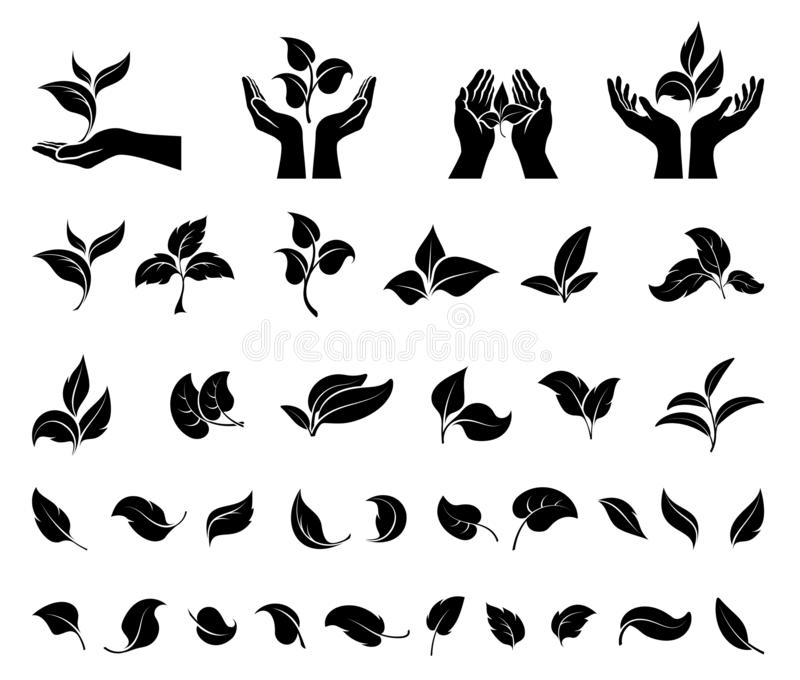Hand holding leaves. Leaf icons set.  Concept environmental conservation, nature protection, ecology. royalty free illustration