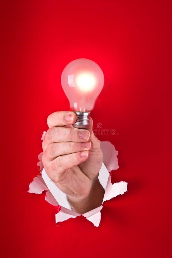Download Hand holding light bulb stock photo. Image of lighting - 7767732