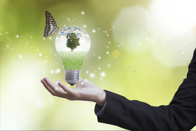 Hand holding light bulb against tree with butterfly. stock image