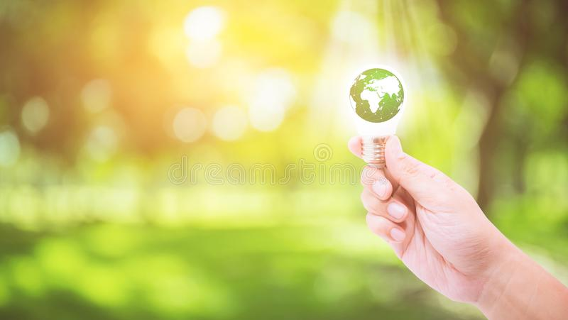 Hand holding a light bulb with energy green world stock images