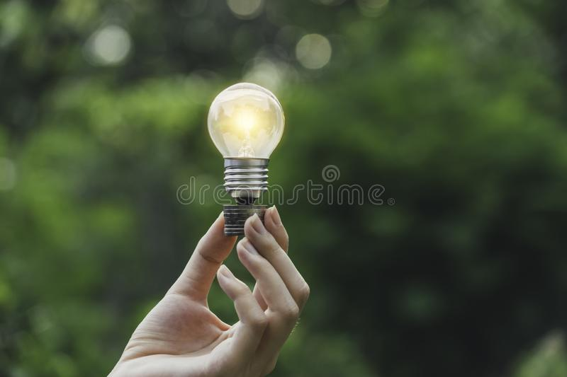 Hand holding light bulb in garden green nature background stock images