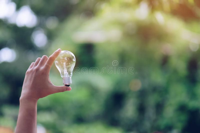 Light bulb with green background. New Idea, Creative, Genius, Innovation and solar energy concepts stock photography