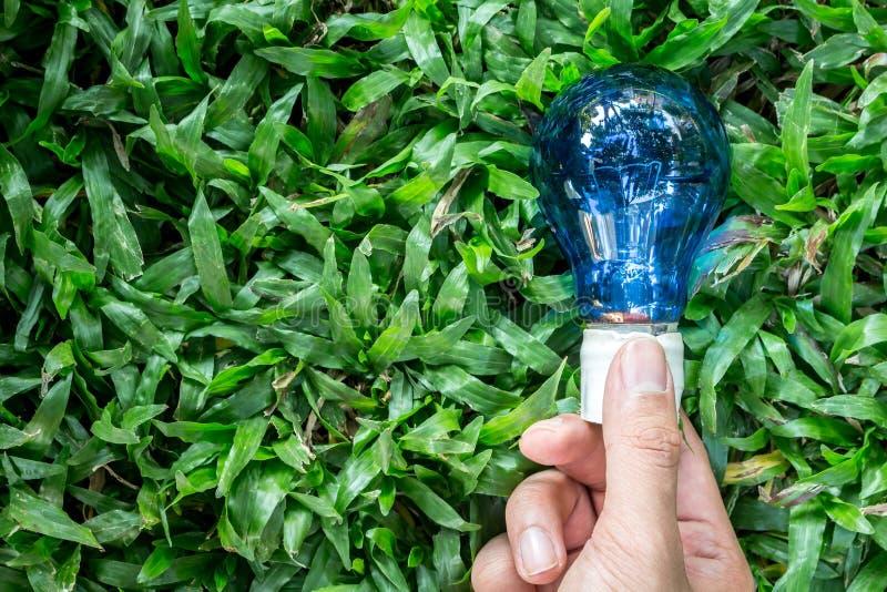 Hand holding light bulb on green grasses. Hand holding light bulb on a green grasses stock image