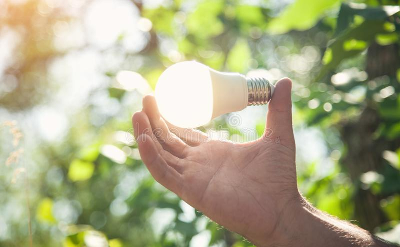 Hand holding light bulb in nature. Green energy stock photo
