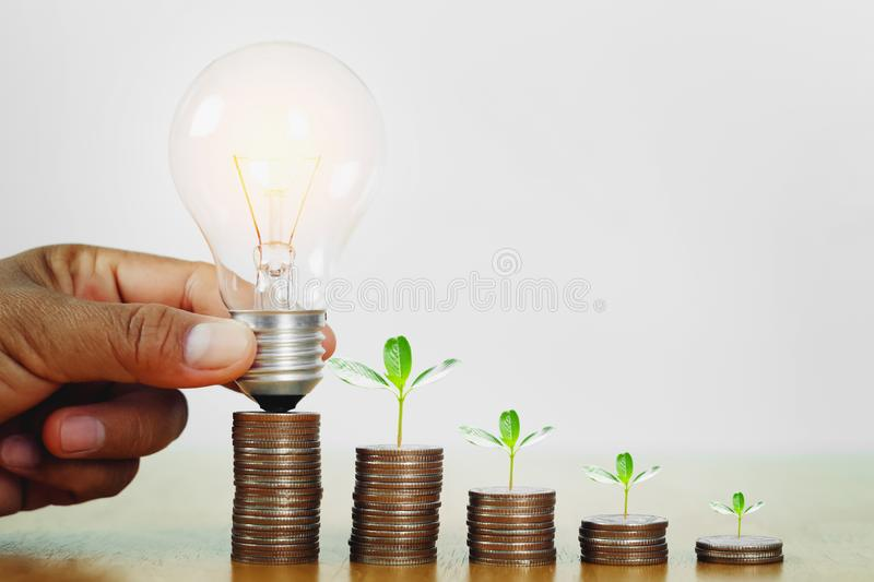 Hand holding light bulb with plant growing step on money. concept finance accounting and saving energy. Electricity, business, lightbulb, save, knowledge stock image