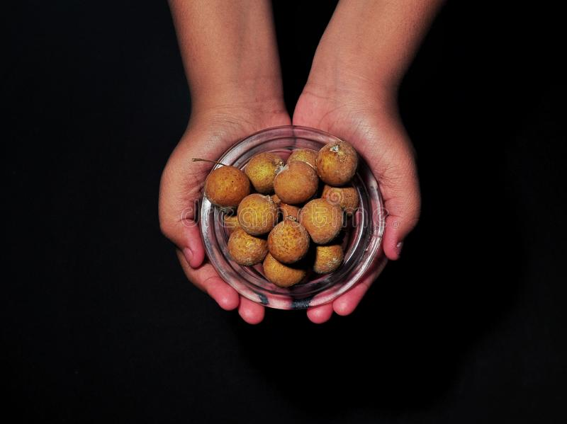 Hand holding longan fruits isolated on white background. Tropical fruit concept.  stock photos