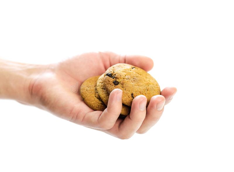 Hand holding oatmeal cookies with chocolate chips. Close up. Isolated on white background royalty free stock image